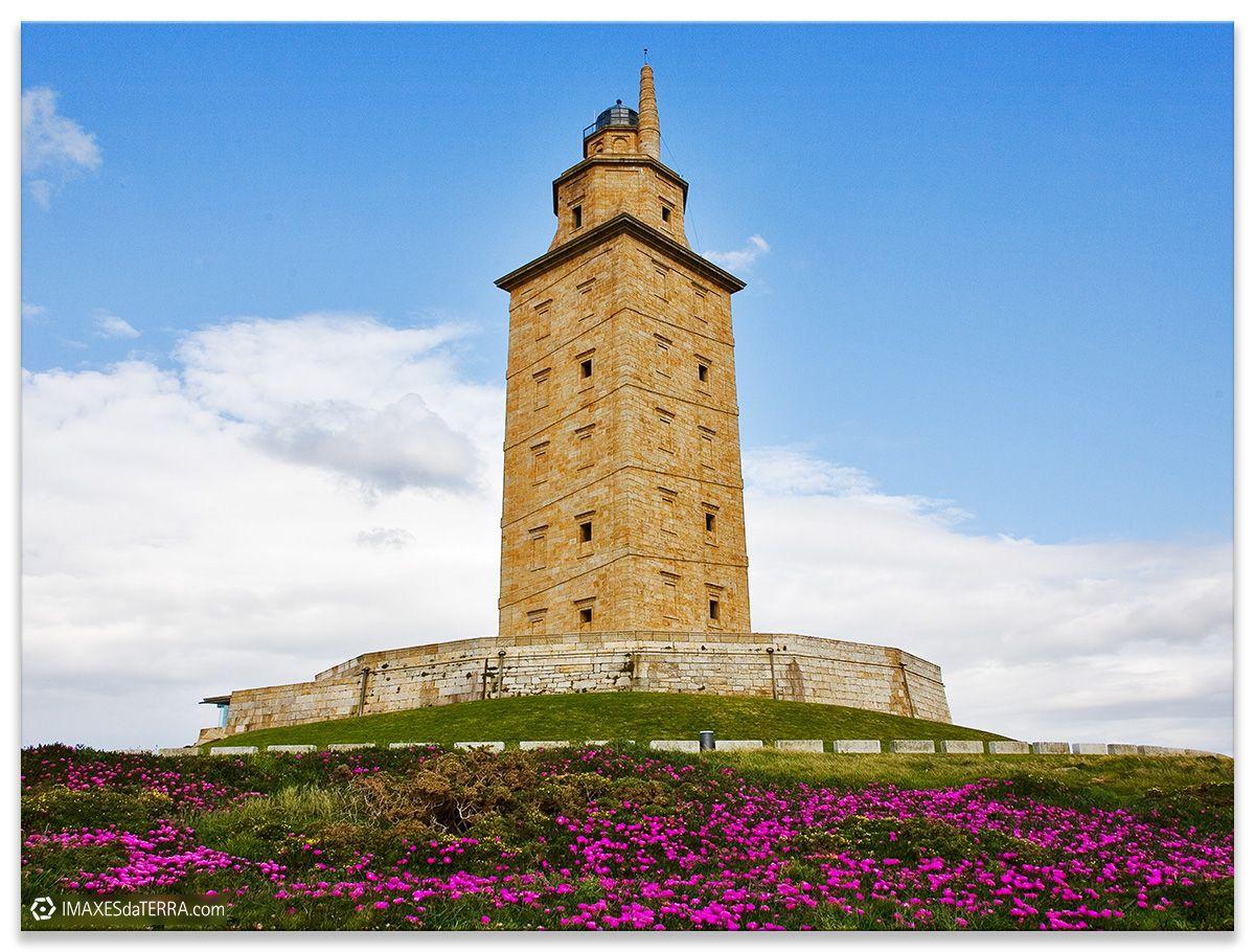 Torre de Hércules Comprar fotografa Faros de Galicia Torre de Hércules Océano Atlántico Primavera Flores Uñas de Gato Natureza Decoración