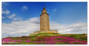 Torre de Hércules durante os meses de primavera Faros de Galicia Torre de Hércules Océano Atlántico Primavera Flores Uñas de Gato Natureza Decoración