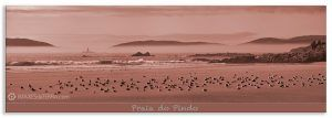 Comprar fotografía de Galicia Playa de O Pindo Decoración Naturaleza Paisaje